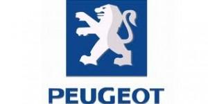 WWW.PEUGEOT.COM.BR, SITE DA PEUGEOT