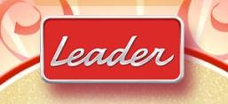 WWW.LEADERCARNAVAL2013.COM.BR, PROMOÇÃO LEADER CARNAVAL 2013