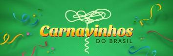 WWW.CARNAVINHOSDOBRASIL.COM.BR, SITE CARNAVINHOS DO BRASIL