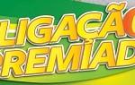 WWW.PROMOLIGACAOPREMIADA.COM.BR, PROMOÇÃO RATINHO E SCOTCH-BRITE LIGAÇÃO PREMIADA
